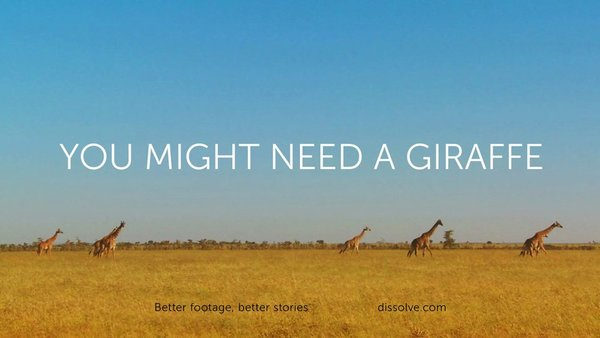 You Might Need a Giraffe